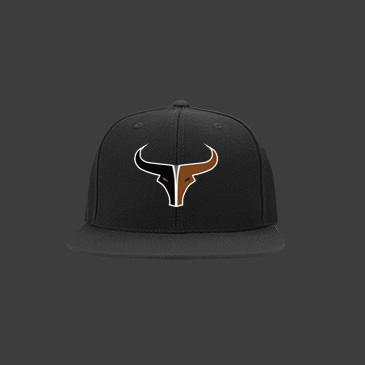 2017 Flat Bill Longhorns Hats