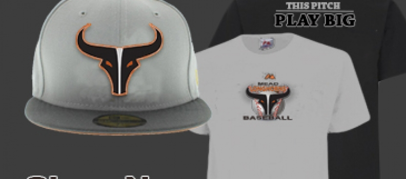 New Longhorn Tee Shirts and Hats!